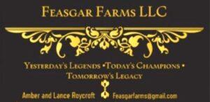 Feasgar Farms LLC Great Danes